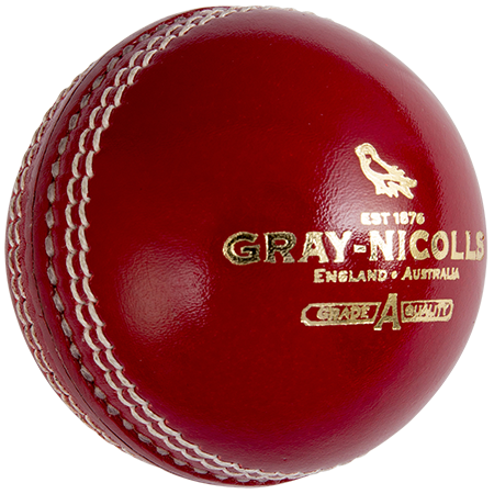 Gray-Nicolls Cricket Crest Academy Red Back